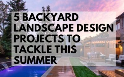 5 Backyard Landscape Design Projects to Tackle this Summer