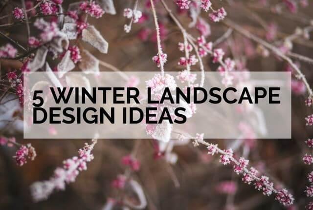 5 Winter Landscape Design Ideas